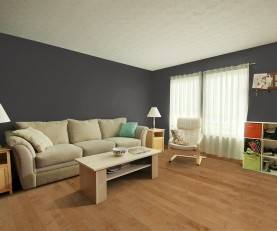 Virtual Room Visualizer Tool By Carpet One Floor Home